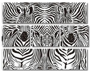 фон образца зебры
