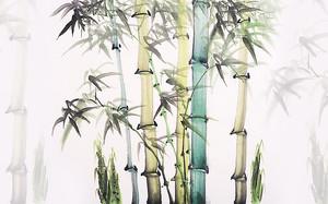 Бамбук красками