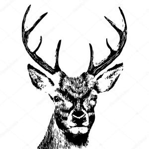 Руки drawn голову оленя