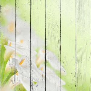 Фон с красивыми белыми каллами