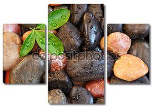 Zen камни фон с листьями и водных капель