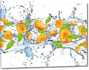 Свежие куски абрикосов в брызгах
