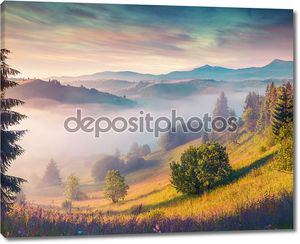 Morning in the Carpathian mountains.