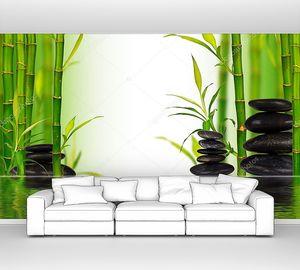 Бамбуковые побеги с водной поверхностью