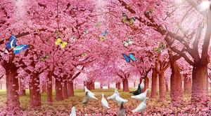 Голуби на розовой аллее