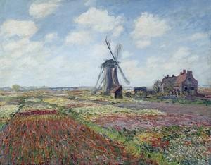 Моне Клод. Поля тюльпанов в городе Райнсбург Мельница, 1886