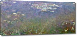 Моне, Водяные лилии, Агапантус