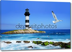 Lighthouse on rocks, sea  coast, flying seagull