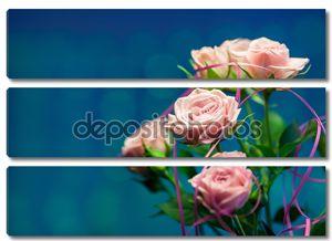 Розовая роза с круг бирюзовый и синий фон