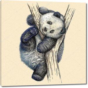 Малыш панда на дереве