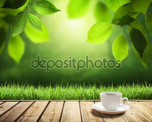 чашка кофе и солнечные деревья фон