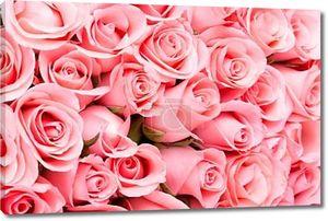 розовый повысился цветочный фон букета