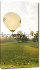 фестиваль воздушных шаров в утреннем свете