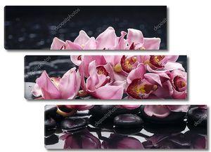 Натюрморт с орхидеей и камнями дзен