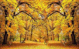 Олени в золотом лесу