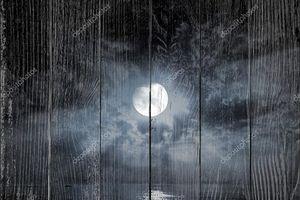 Лунные лучи