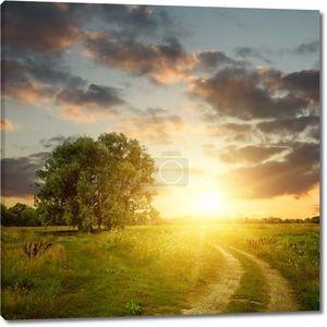 поле и грунтовой дороге до заката