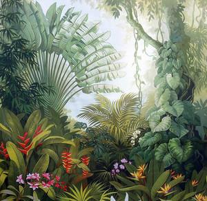 Тропический таинственный лес