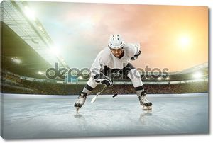 Хоккеист на льду стадиона