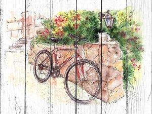 Акварель летняя иллюстрация с велосипедом