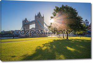 Восход солнца на Тауэрский мост с дерева и зеленая трава, Лондон, Великобритания