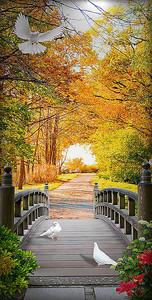 Дорожка в осеннем парке