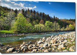 Пейзаж с рекой и лесом