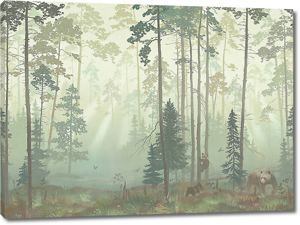Медведица в хвойном лесу