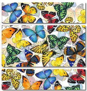 фон бабочки.