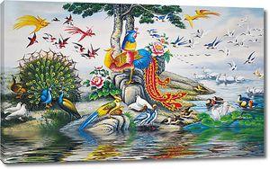 Разноцветный птичий мир