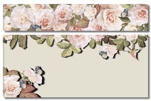 Кусты розы и бабочки