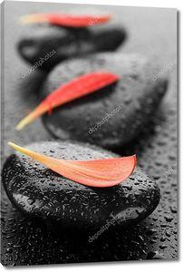 Zen спа мокрые камни