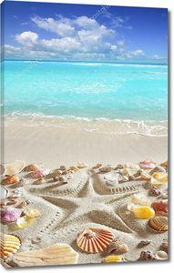 Пляж песка звезды печати тропического Карибского моря