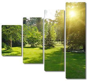 Восход солнца в красивом парке