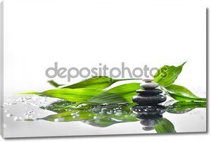 фон с камнями и веточки зеленого бамбука