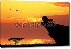 Лев на закате