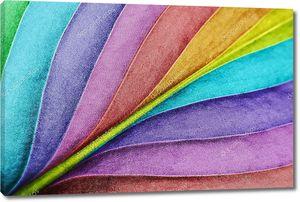 Цветной лист крупным планом