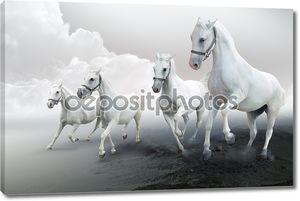 Белые лошади мчатся вперед