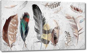Разноцветные птичьи перья
