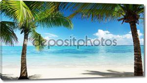 Пальмы и море