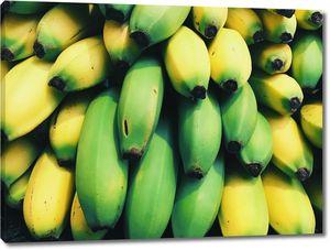 Яркие бананы