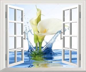 Каллы из воды в открытом окне