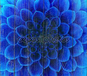 Абстрактный синий цветок