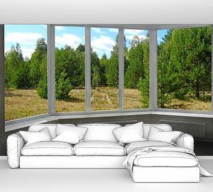 Окна с видом на сосновый лес