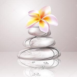 Спа концепции zen камни и цветы Франгипани
