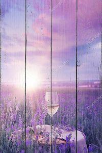 Вино на поле лаванды в лучах заката