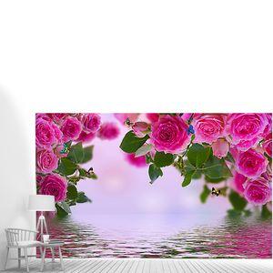 Розы над водой
