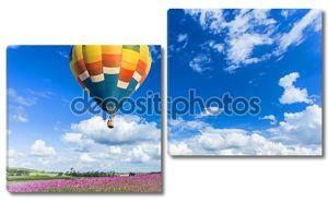 красочный воздушный шар над полями розовый цветок с фоном голубого неба
