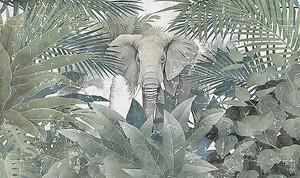 Слон в зарослях