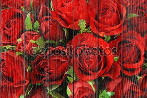 фон красных роз